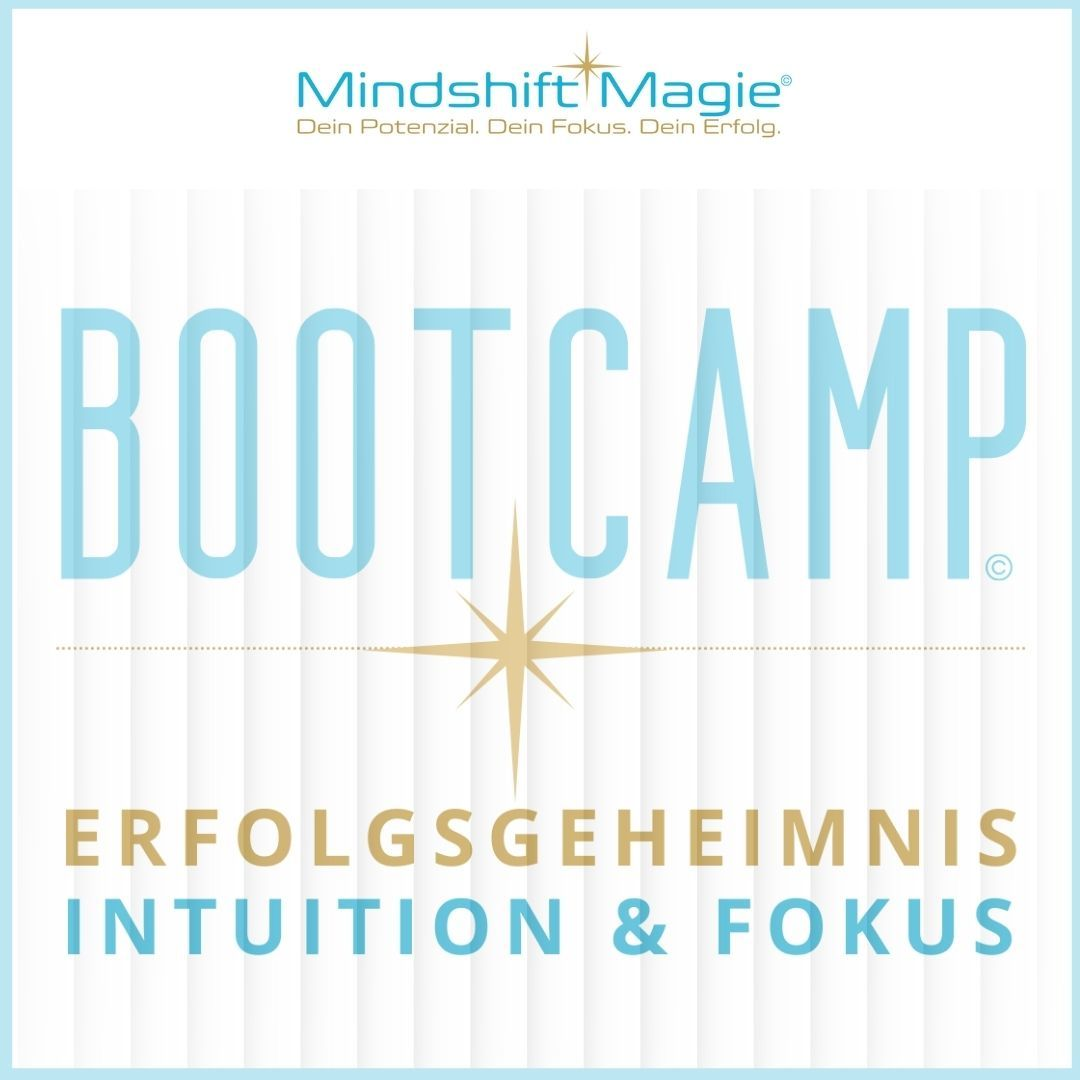 Bootcamp Intuition & Fokus